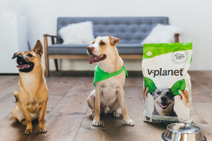 V-planet to launch vegan dog food products in Japan