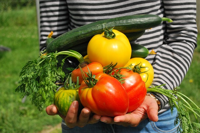 How To Make A Natural And Chemical Free Garden